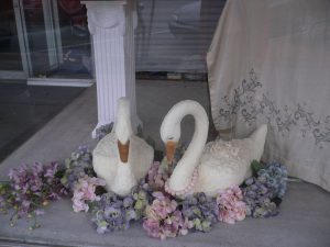 Image of Swan Cakes