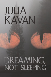 Cover Image For 'Dreamin, Not Sleeping' by Julia Kavan