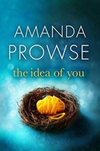 Cover Image Of The Book 'The Idea Of You' By Author Amanda Prowse