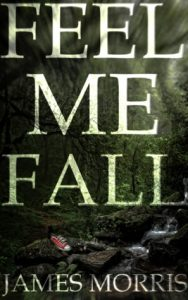 Cover Image 'Feel Me Fall' By James Morris
