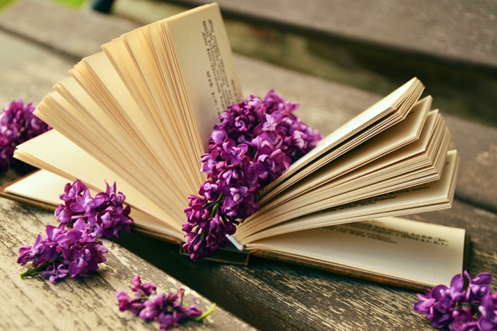 Image of a book led down with a purple flower placed between its open pages - used for 'It's Monday! what are you reading?' meme posts