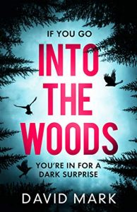 Cover image of the book 'Into the Woods' by author Mark David